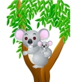 Cute mother and baby koala vector