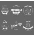 Farm fresh products badge set vector
