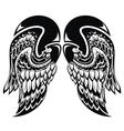 Angel wings vector