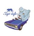 Blue tiger violet car driver vector