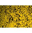 Sand leopard vector