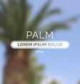 Summer palm blurred unfocused retro background vector