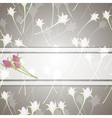 Roses and white ribbon vector