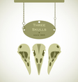 Three skulls signs vector
