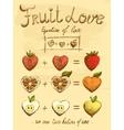 Fruit love formula vintage poster vector