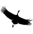 Crane bird vector