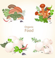 Collection of isolated edible mushrooms with herbs vector