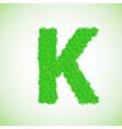 Grass letter k vector