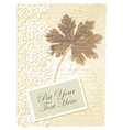 Vintage geranium leaves card vector