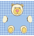 Bear for baby boy vector