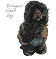 Dog breed portuguese water dog vector