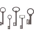 Old keys vector