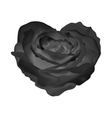Heart-rose object flower on a white background vector