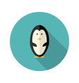 Penguin flat icon over blue vector