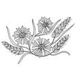 Decorative cornflower and wheat vector