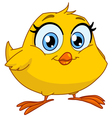 Smiling chick vector