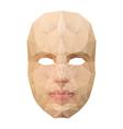 Polygonal face mask vector
