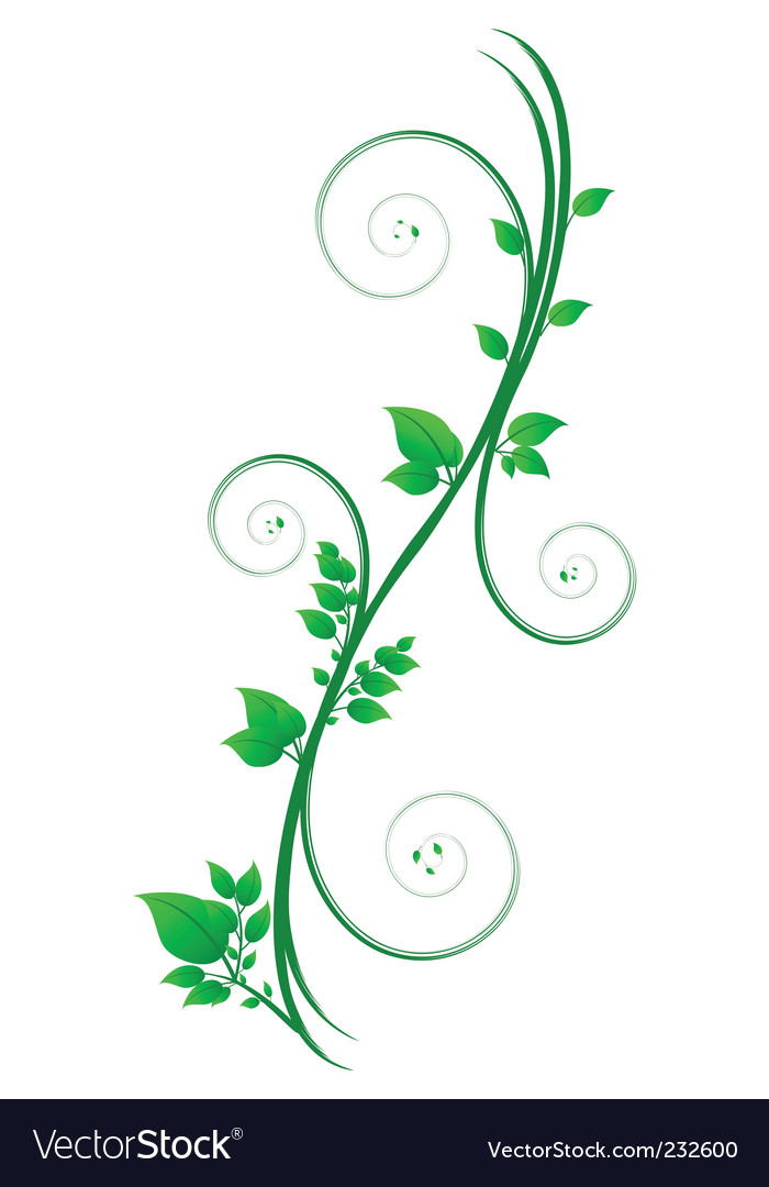 Floral scroll vector | Price: 1 Credit (USD $1)