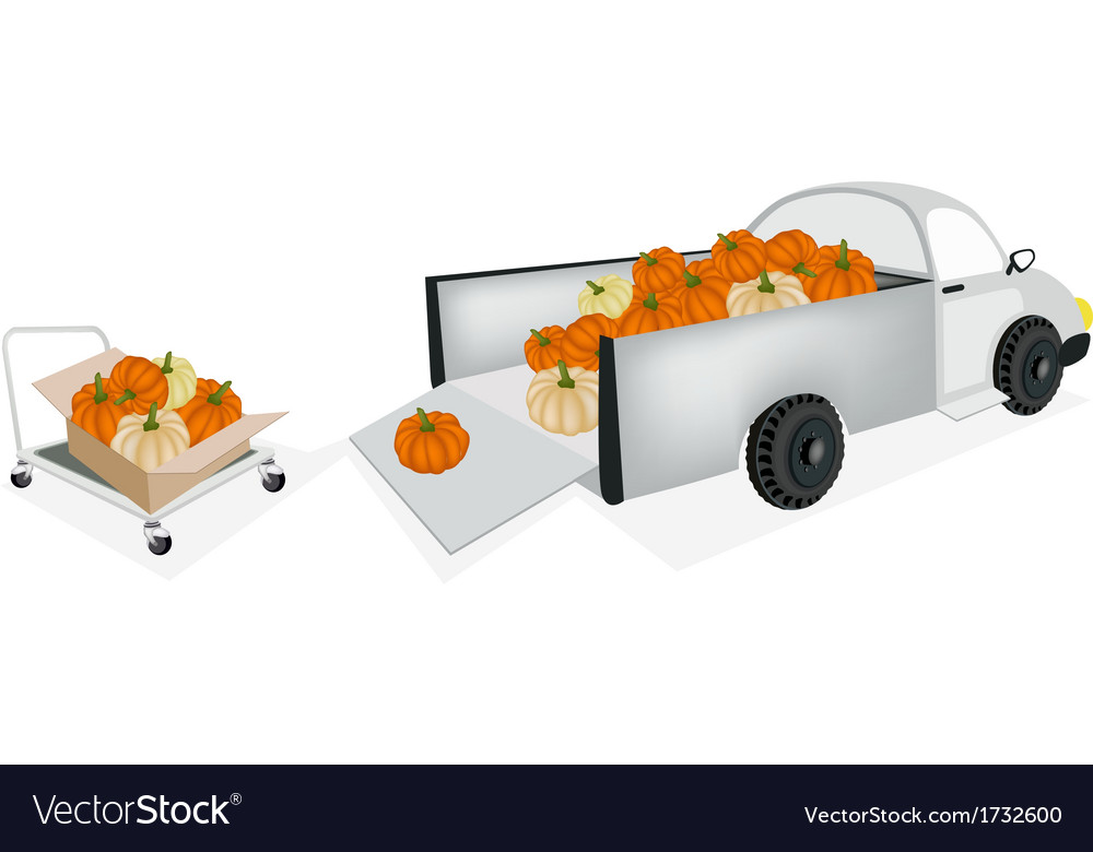 Hand truck loading fresh pumpkins into pickup vector | Price: 1 Credit (USD $1)