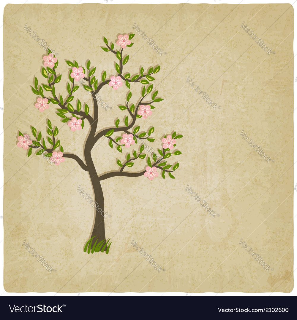 Pink flowers blossom tree vector | Price: 1 Credit (USD $1)