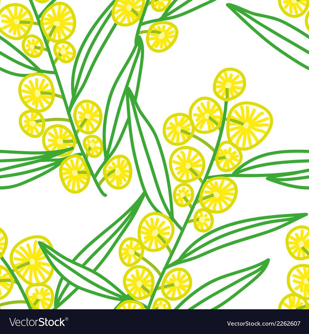 Mimosa vector | Price: 1 Credit (USD $1)