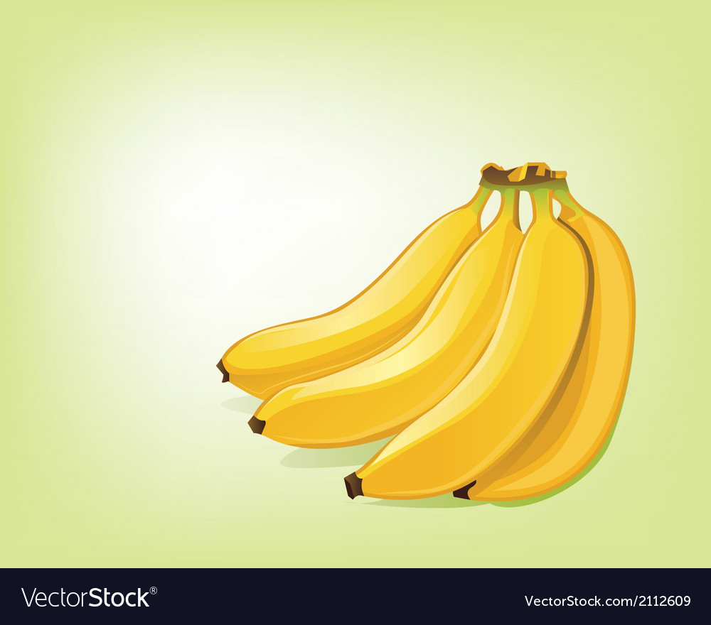 Bananas vector | Price: 1 Credit (USD $1)