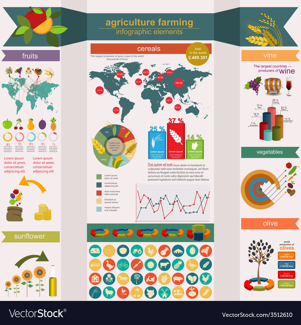 Agriculture farming infographics vector | Price: 1 Credit (USD $1)