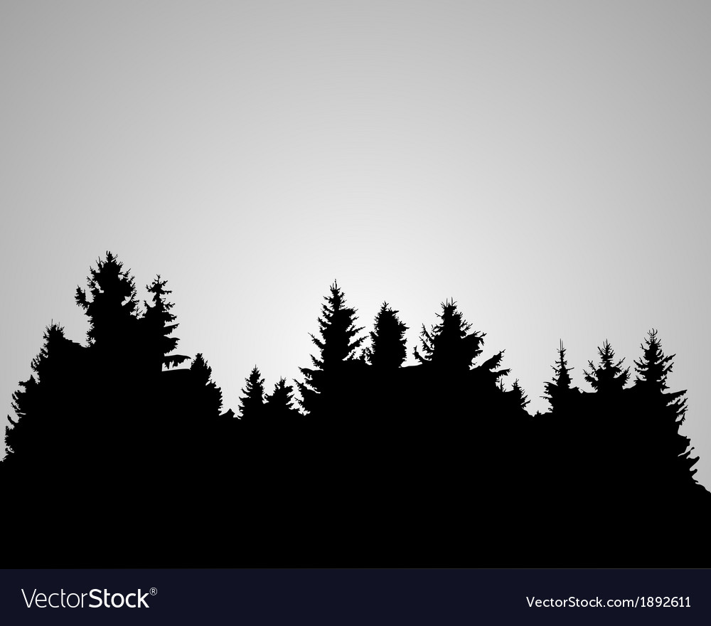 Silhouette of spruce forest vector | Price: 1 Credit (USD $1)