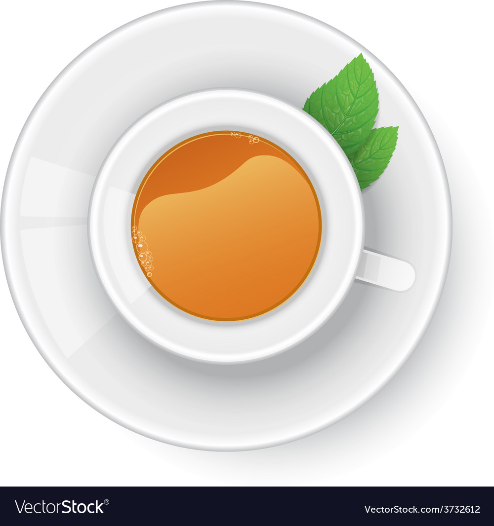 Cup of tea with mint vector   Price: 1 Credit (USD $1)