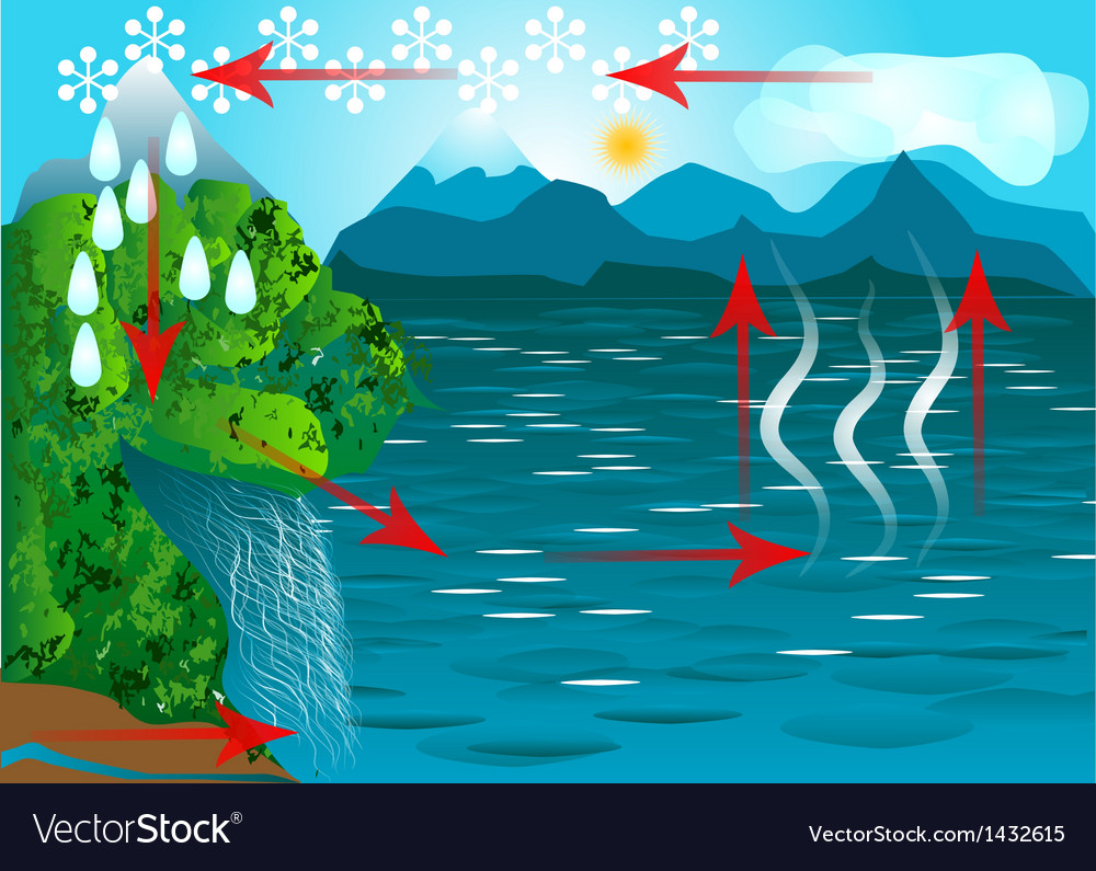 Water cycle vector | Price: 1 Credit (USD $1)