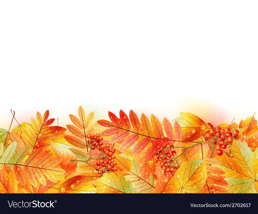 Autumn background with leaves back to school vector | Price: 1 Credit (USD $1)