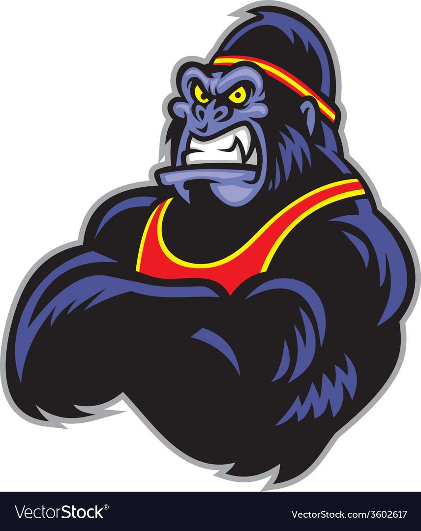 Big sporty gorilla crossed arm vector