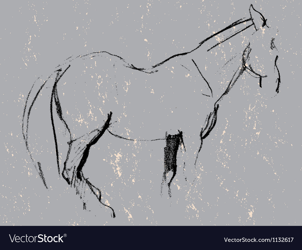 Horse sketch vector | Price: 1 Credit (USD $1)