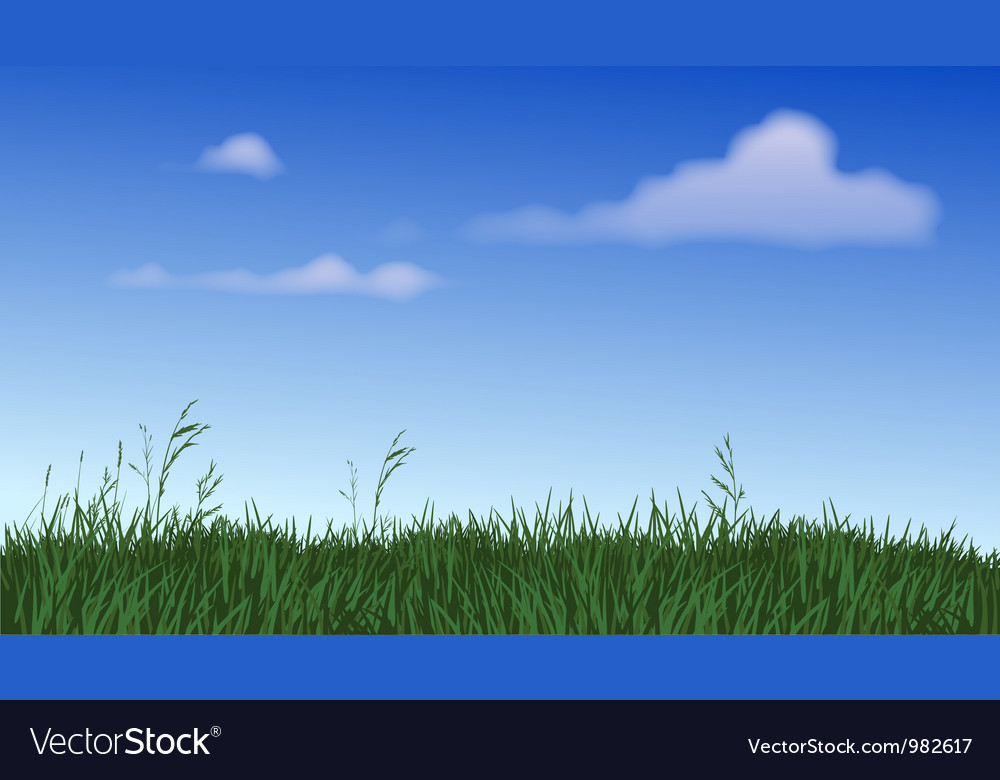 Panoramic field of grass vector | Price: 1 Credit (USD $1)