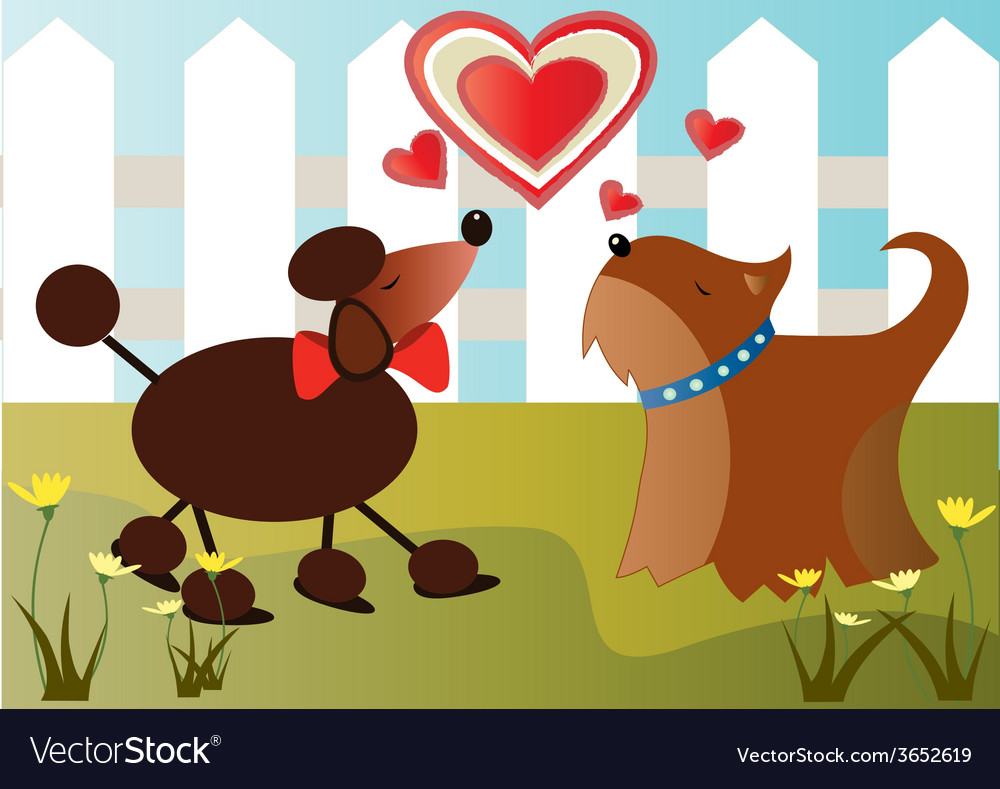 Dogs-in-love vector | Price: 1 Credit (USD $1)