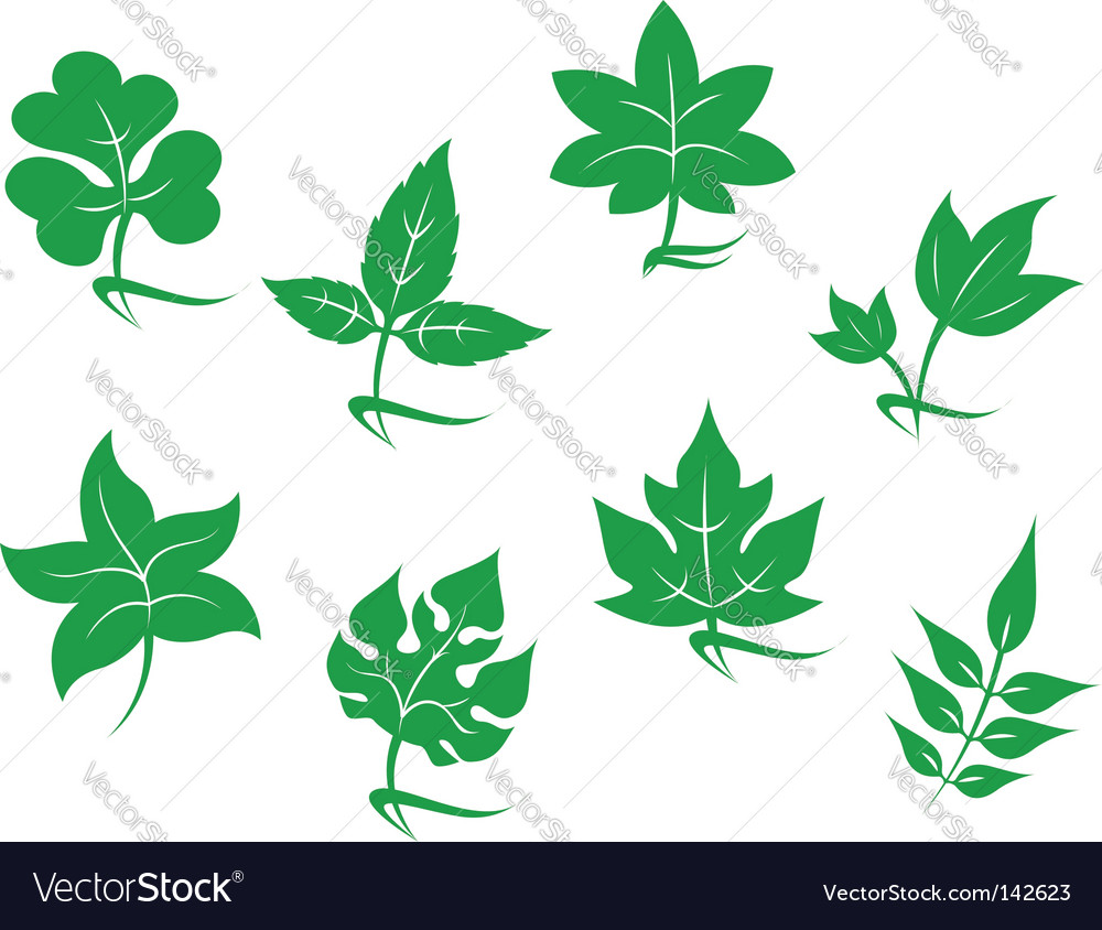 Set of leaves icons vector | Price: 1 Credit (USD $1)