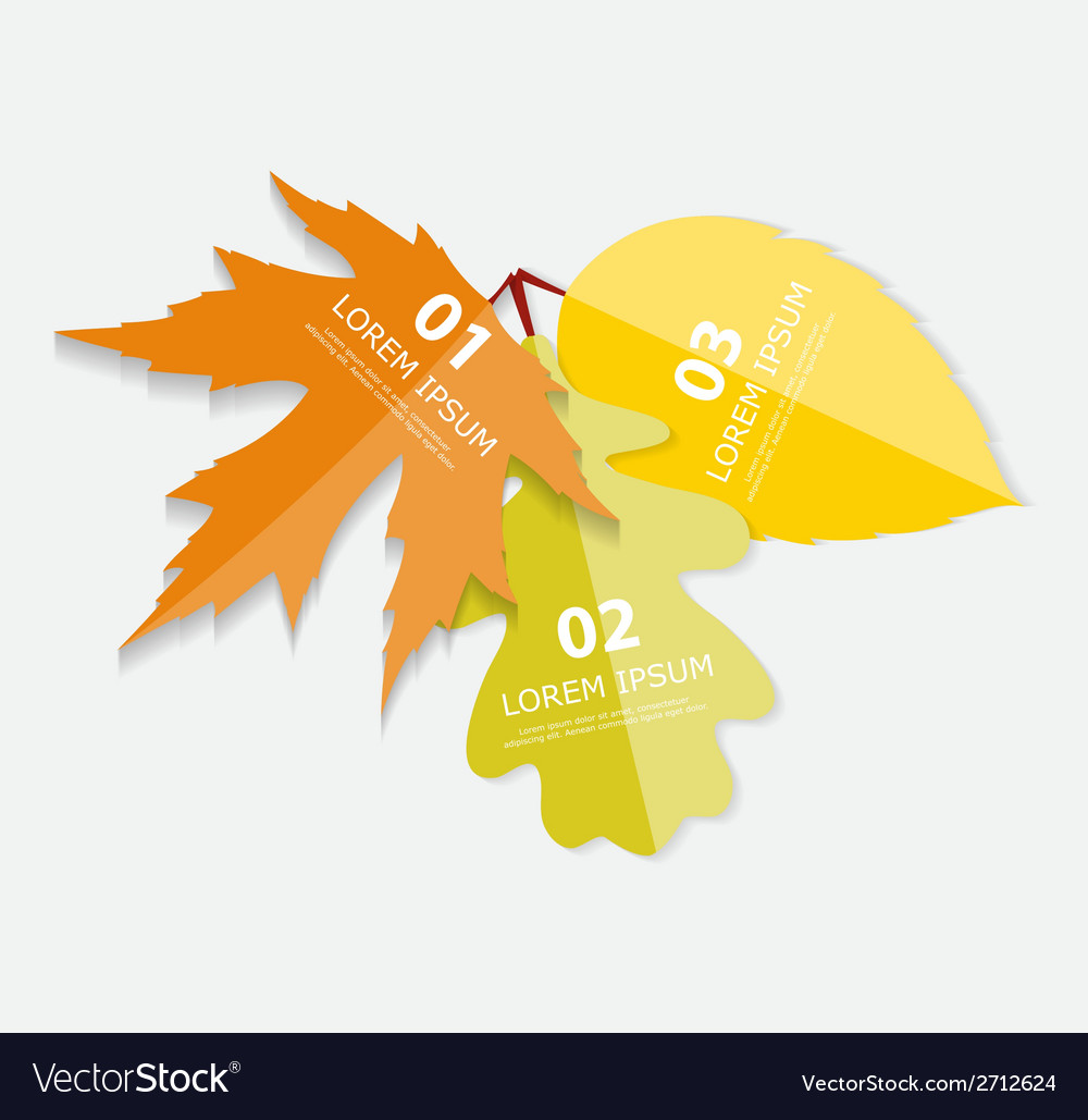 Autumn leaves infographic templates for business vector   Price: 1 Credit (USD $1)