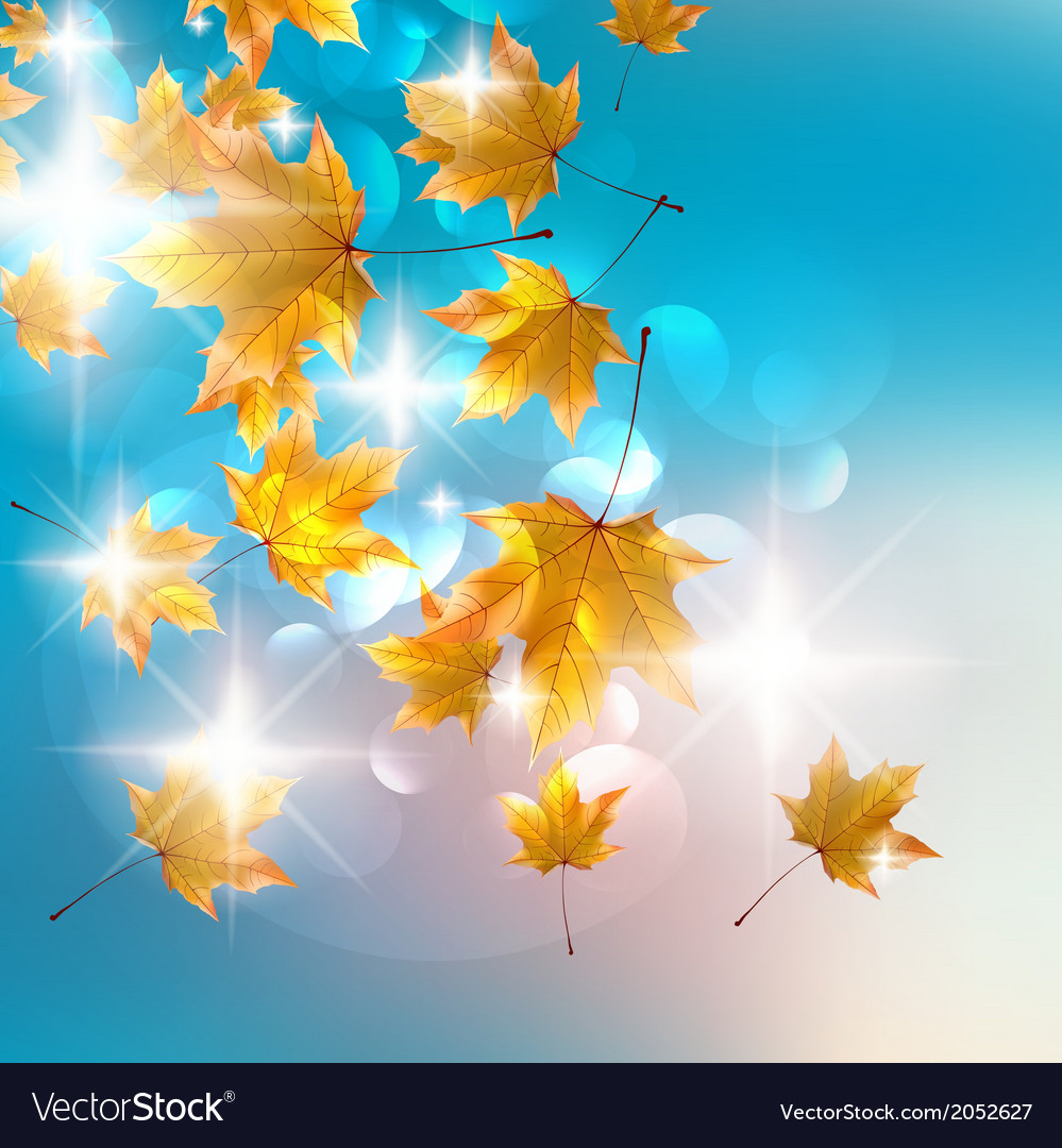 Autumn design background vector | Price: 1 Credit (USD $1)