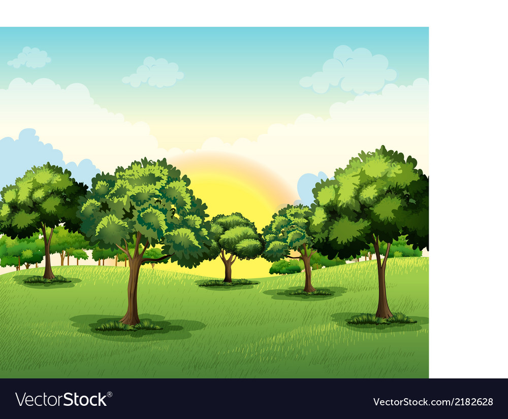 Tall trees vector | Price: 1 Credit (USD $1)