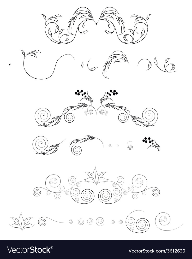 Floral shapes set vector | Price: 1 Credit (USD $1)
