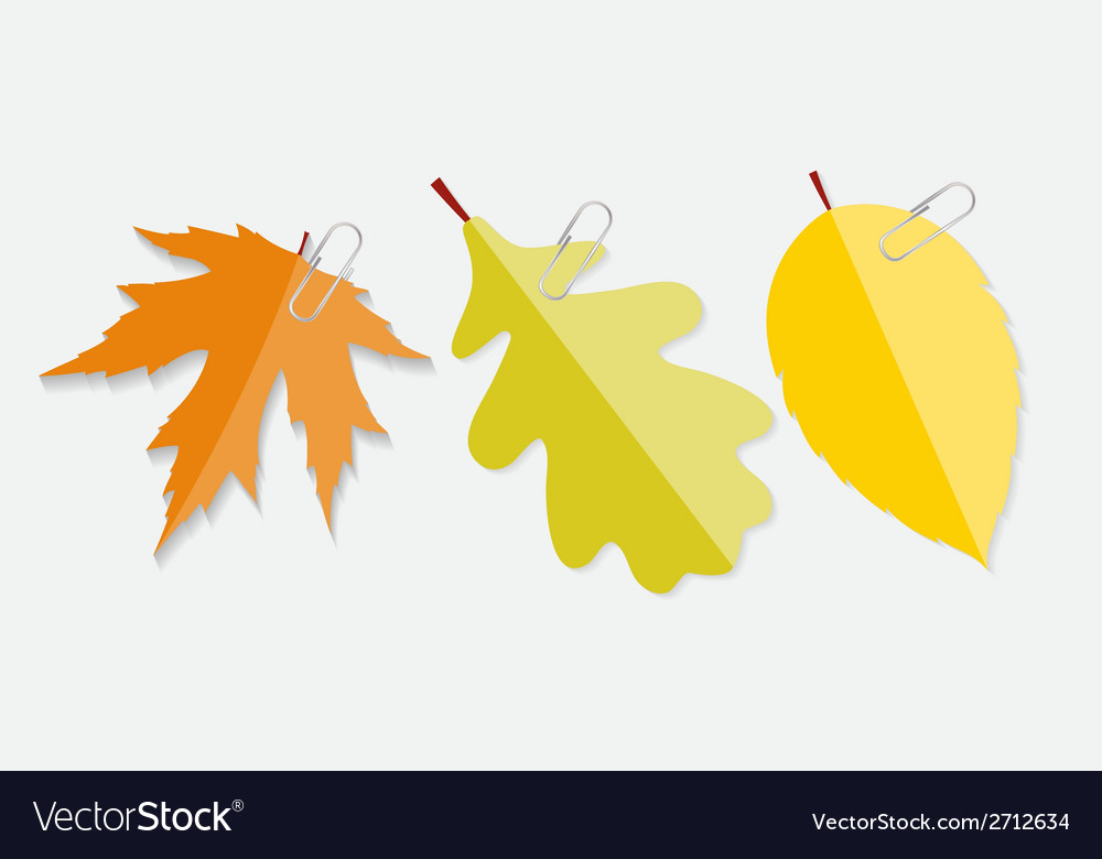 Shiny autumn natural leaves label with clip vector | Price: 1 Credit (USD $1)
