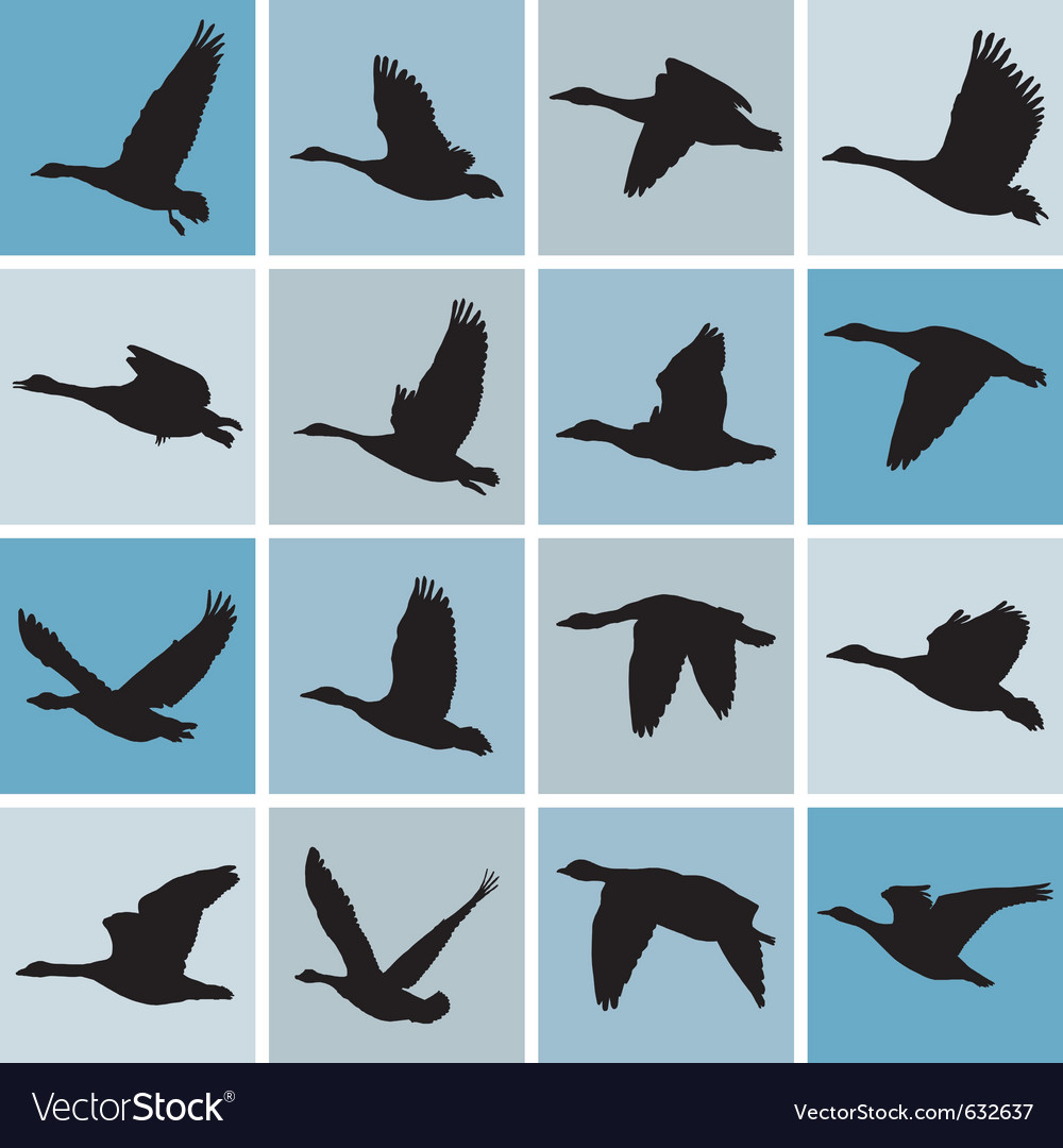 Wild geese pattern vector | Price: 1 Credit (USD $1)