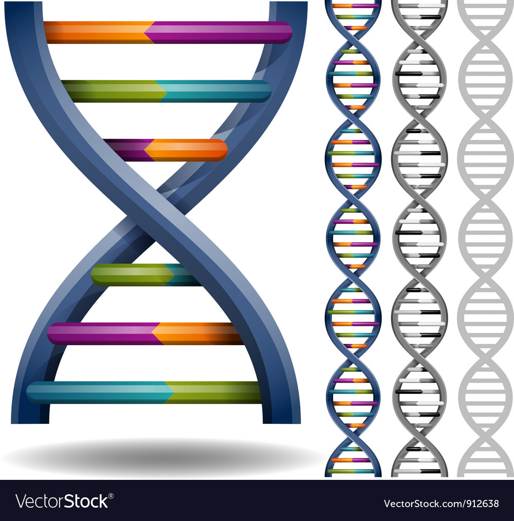 Dna vector | Price: 3 Credit (USD $3)