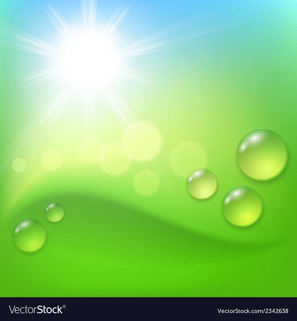 Green abstract background with drop of dew and sun vector | Price: 1 Credit (USD $1)