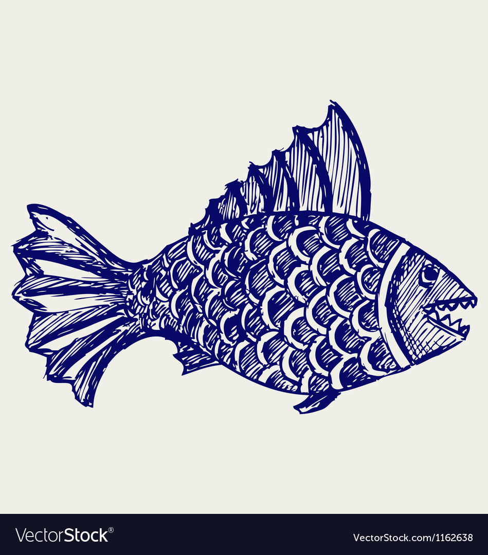 Piranha fish vector | Price: 1 Credit (USD $1)