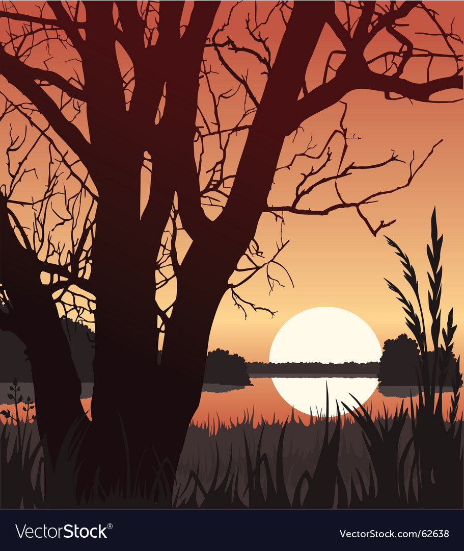 Sunset and tree vector | Price: 1 Credit (USD $1)