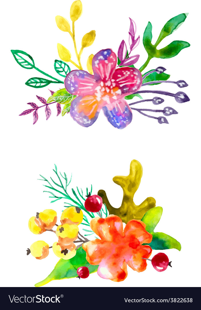 Watercolor flower compositions vector | Price: 1 Credit (USD $1)