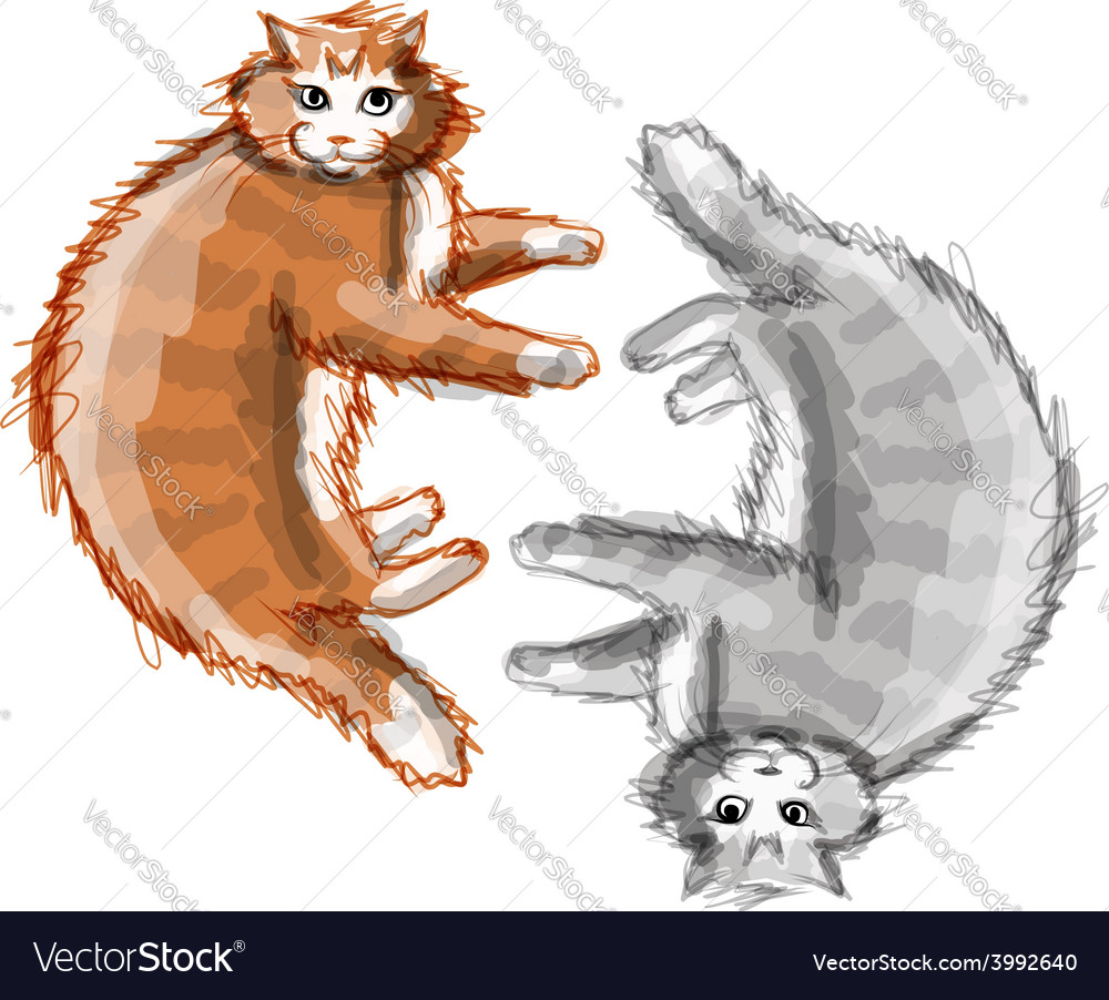 Cute orange and grey cats sketch for your design vector | Price: 1 Credit (USD $1)