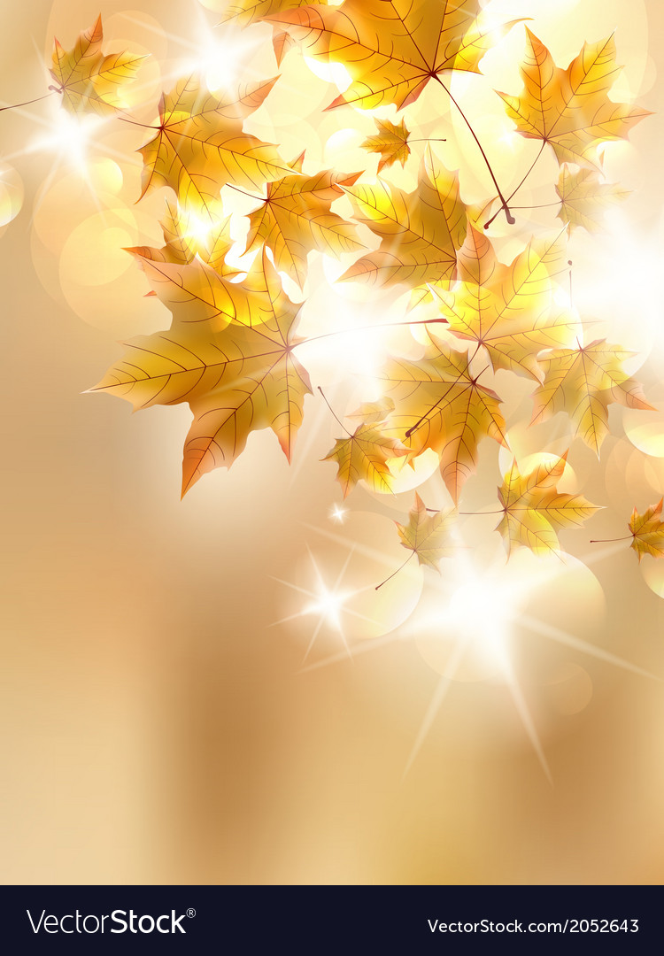 Autumn leaves very shallow focus vector | Price: 1 Credit (USD $1)