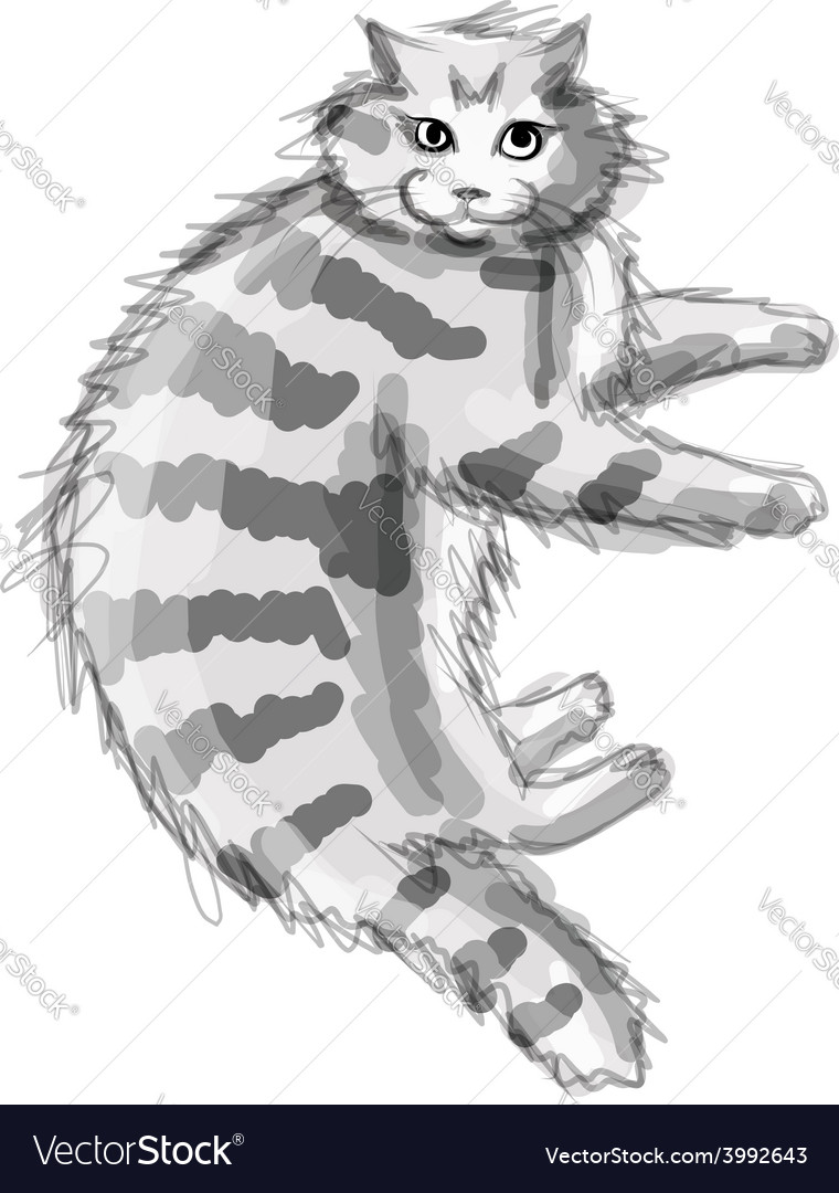 Cute grey cat sketch for your design vector   Price: 1 Credit (USD $1)